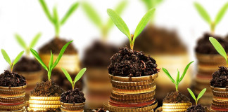 Veja nesta matéria o que você deve levar em conta na hora de buscar por franquias lucrativas com um alto potencial de retorno. Veja quais são os critérios para que você possa identificar franquias rentáveis para iniciar seu negócio.