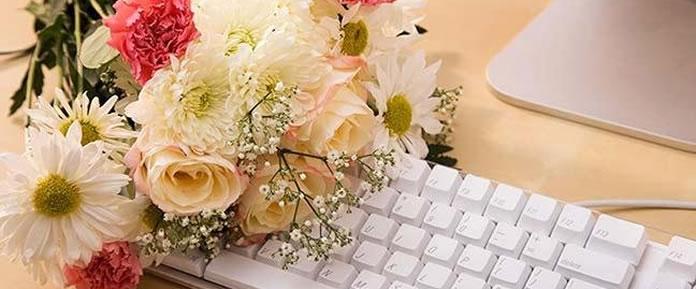 Veja o que você precisará para iniciar o seu negócio de venda de flores na Internet. Como montar uma floricultura na Internet